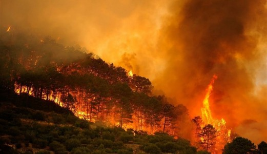 Wildfires in Spain, with Ignacio Villaverde