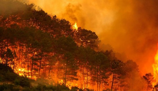 The sixth generation of wildfires will reach the north of the peninsula in the next 30 years